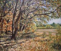 Wald, Erfurt, Baum, Malerei