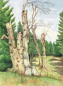 Thüringer wald, Baum, Märchen, Aquarell