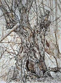 Zeichnung, Waldgeist, Weide, Sepia