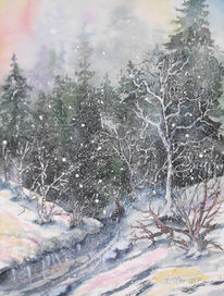 Tanne, Baum, Winterlandschaft, Winter