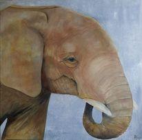 Braun, Grau, Natur, Baby elefant