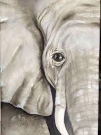 Ölmalerei, Schnitt, Natur, Schwarz weiß