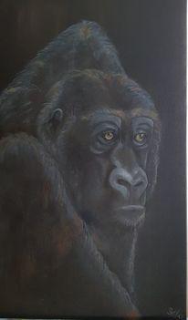 Gorilla, Natur, Schwarz, Tiere