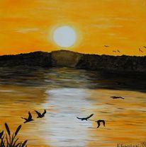 Vogel, Wasser, Meer, Sonne