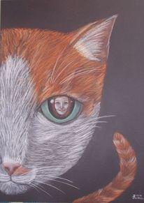 Portrait, Katze, Frau, Zeichnungen