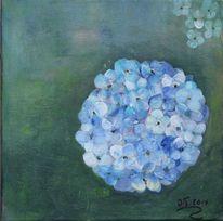 Sommer, Hortensien, Blüte, Blau