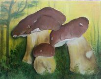 Natur, Pilze, Braun, Grün