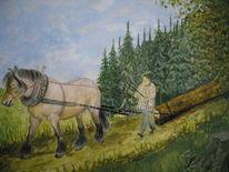 Pferde, Mann, Wald, Tiere