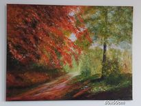 Wald, Waldweg, Herbst, Herbstlaub