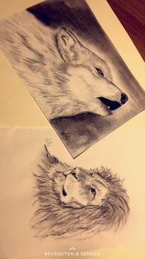 Raubtier, Figural, Löwe, Natur