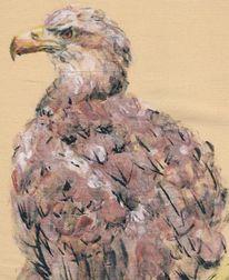 Adler, Vogel, Malerei