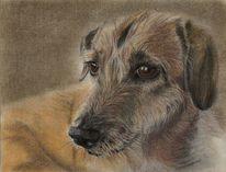 Tiere, Hund, Mischling, Malerei