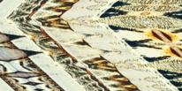 Abstrakt, Wandmalerei, Bunt, Struktur