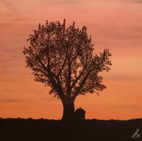 Sonnenuntergang, Baum, Altglas, Malerei