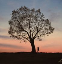 Baum, Müll, Umwelt, Malerei