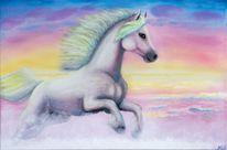 Pferde, Meer, Wasser, Weiß