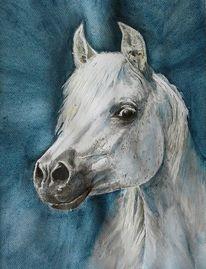 Araber, Aquarellmalerei, Pferde, Aquarell