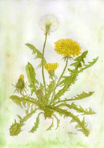 Sommer, Aquarellmalerei, Löwenzahn, Sommerblumen
