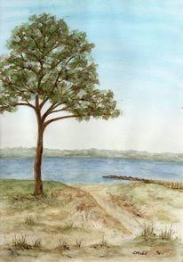 Strand, Baum, Flensburg, Schleswig