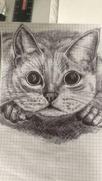 Kugelschreiber auf zeichnungspapier, Katze, Zeichnungen