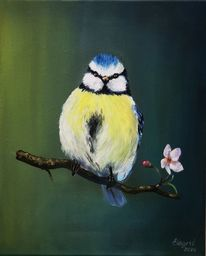 Blaumeise, Ölmalerei, Vogel, Natur
