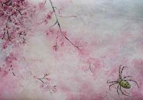 Natur, Spinne, Tiere, Kirschblüten