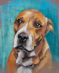 Pastellmalerei, Blau, Hund, Rot