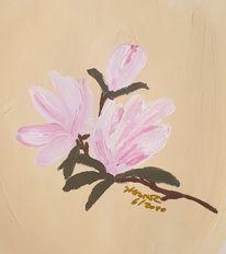 Weiß, Magnolien, Rosa, Blüte