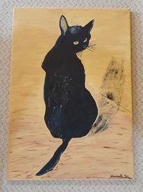 Ocker, Katze, Schatten, Schwarz