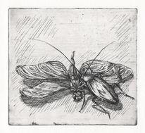 Leiche, Müll, Fliegen, Kakerlaken