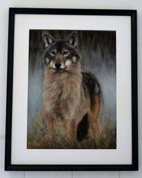 Wolf, Freiheit, Pastellmalerei, Wild