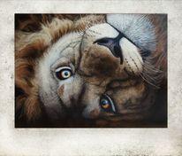 Acrylmalerei, Löwe, Natur, Tierwelt