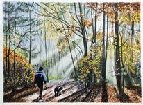 Sonnenstrahlen, Herbst, Spaziergänger, Wald