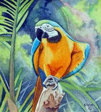 Wald, Papagei, Palmen, Vogel