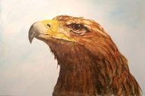 Vogel, Aquarell tiere, Aquarellmalerei, Adler