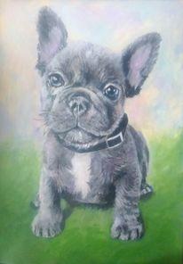 Acrylmalerei, Tiere, Tierportrait, Hund