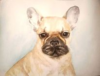 Hundeportrait, Aquarellmalerei, Französische bulldogge, Tiere