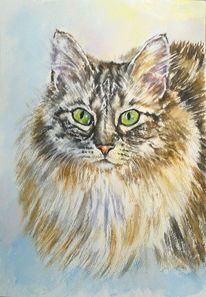 Katze, Aquarellmalerei, Norwegische waldkatze, Tiere