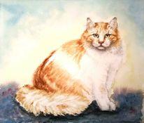 Katze, Aquarellmalerei, Katzenportrait, Aquarell tiere