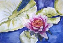 Aquarellmalerei, Rosenteich, Teich, Blumen
