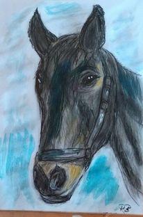 Tiere, Pferde, Zeichnungen,