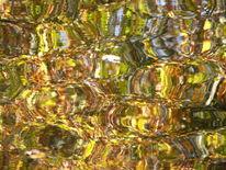 Wasser, Reflexion, Herbst, Fotografie