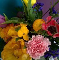 Blumen, Stillleben, Fotografie