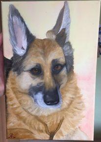 Hund, Anfänger, Ölmalerei, Malerei