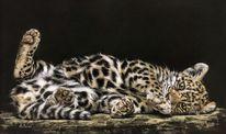 Pastellmalerei, Katze, Leopard, Tierportrait