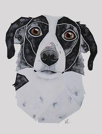 Hundeportrait, Nach fotovorlage, Aquarellmalerei, Hütehund