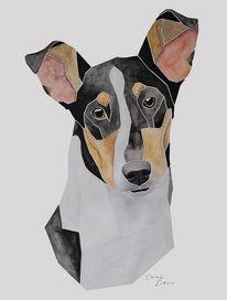 Malen, Hundeportrait, Kurzhaarcollie, Collie