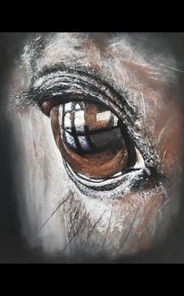 Pferdeauge, Pastellmalerei, Augen, Zeichnungen