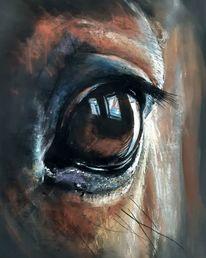 Pferdeauge, Augen, Pastellmalerei, Zeichnungen