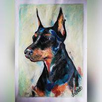 Pastellmalerei, Dobermann, Hund, Malerei